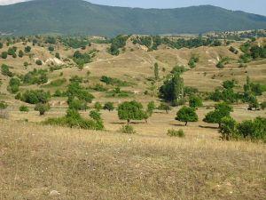 Paysage près de Vitolište.
