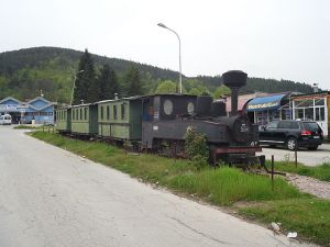 Kicevo_narrow_gauge_train